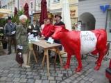 Faire Milch Waidhofen 1. Juni 10. 2