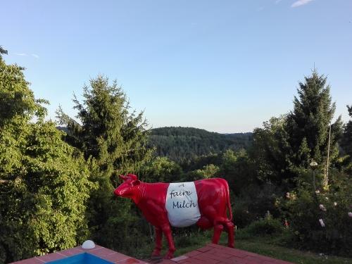 Faironika im Garten, Humeniuk Graz